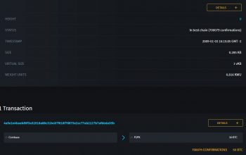 Bitcoin Block 0 oder Genesis